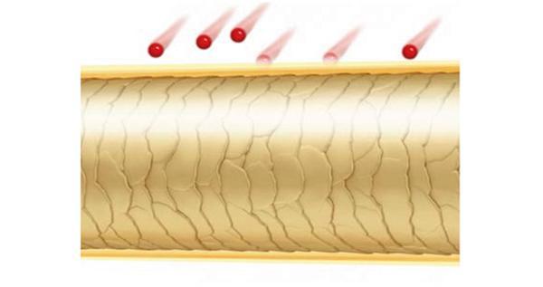 Haar mit Farbschutz-Komplex